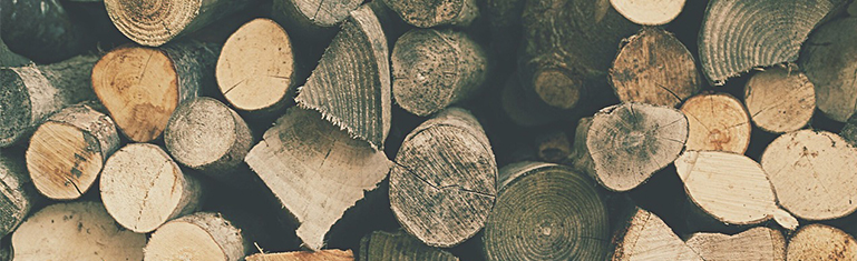 How to Identify Good Firewood for your Stove - Stovax